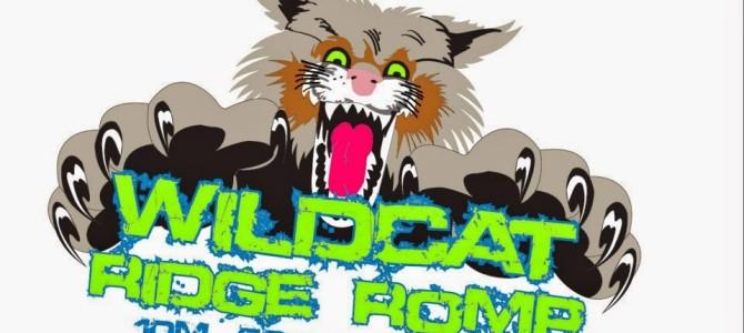 My First 50 Miler: Wildcat Ridge Romp — by Annie Rorem