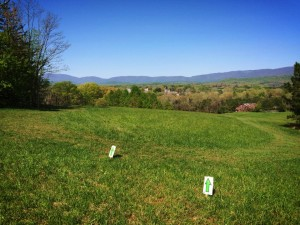 MSA trail through fields